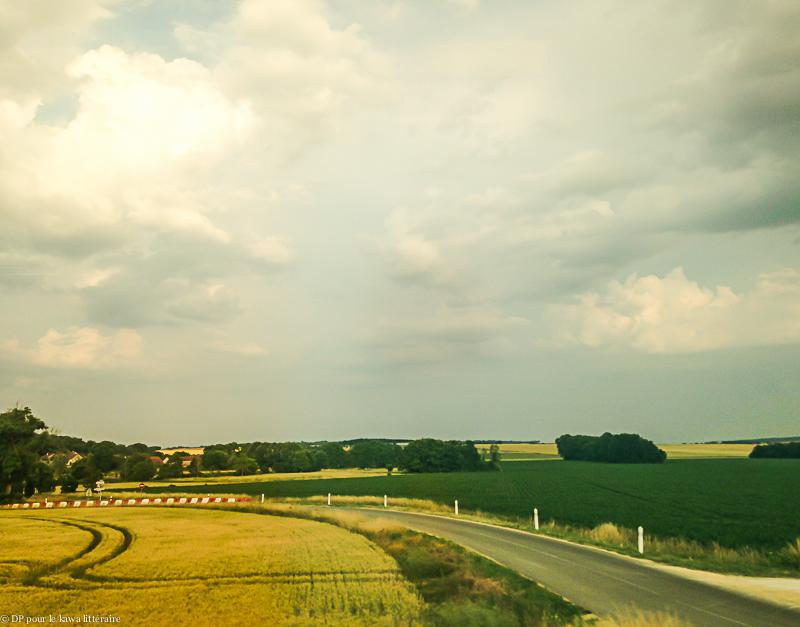 20062017-sur-la-route-de-Metz-200617