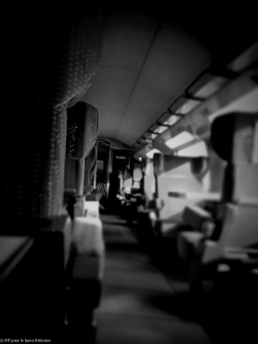 22022012-TGV Nantes-210212.jpg