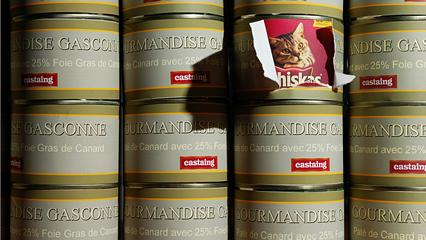 Du miel frauduleux au Québec. En Grande-Bretagne, on a créé le National Food Crime Unit (NFCU) le bras policier de Food Standards Agency (FSA).