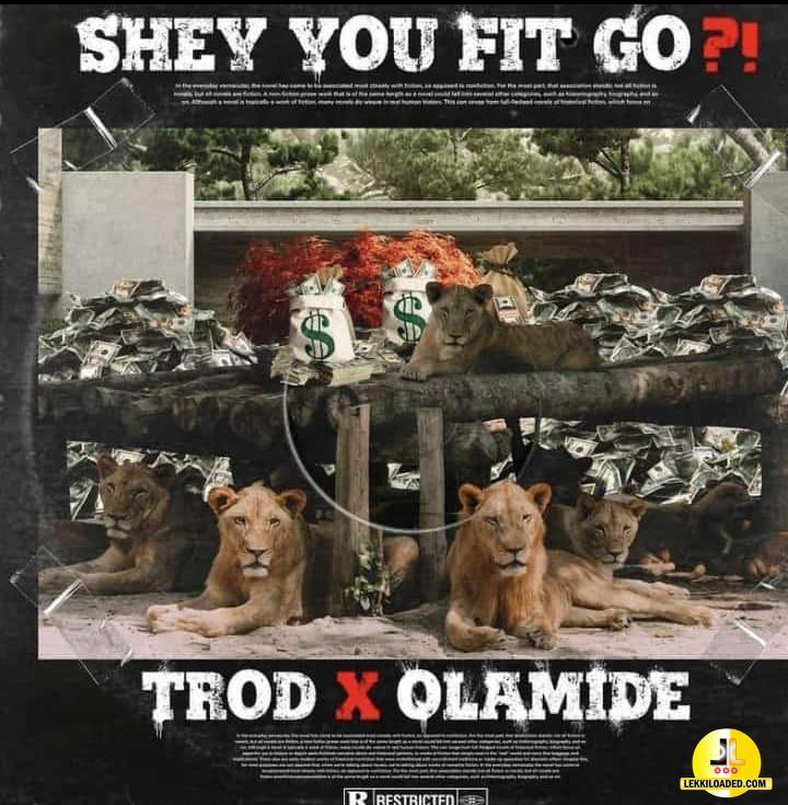 Trod - Shey You Fit Go Ft Olamide