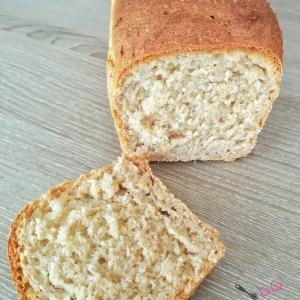 pain de mie - semi complet - companion - robot
