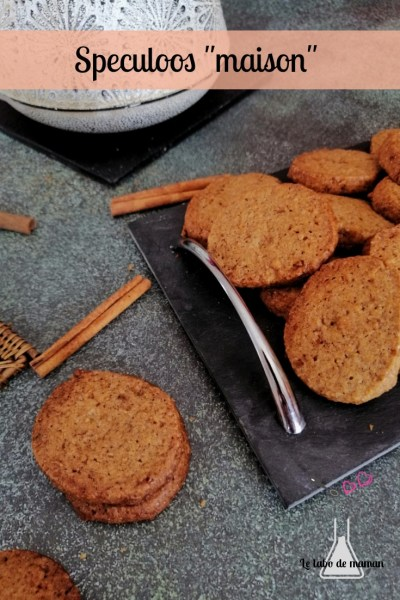 speculoos maison cannelle