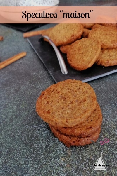speculoos maison companion