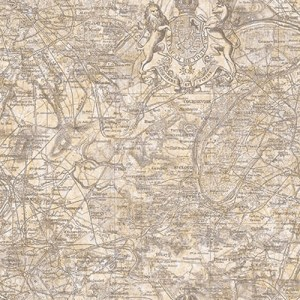JP30500 Journeys Vespucci Map Wallpaper Taupe