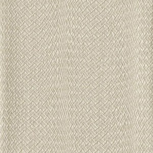 RRD7269 York Wallcoverings Ronald Redding Atelier Twining Wallpaper Beige
