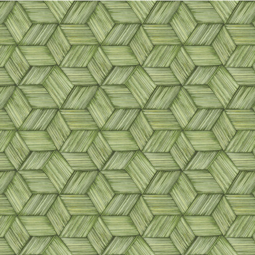 PS41414 Brewster Wallcoverings Kenneth James Palm Springs Intertwined Wallpaper Light Green