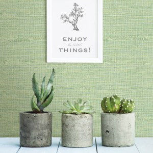 3117-24284 Brewster Wallcovering Chesapeake The Vineyard Agave Grasscloth Wallpaper Room Setting