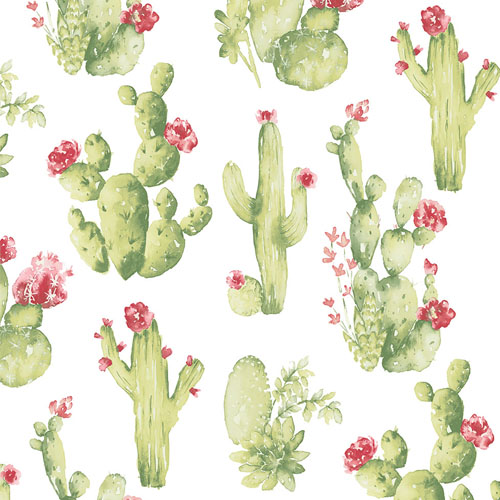 CK36630 Patton Wallcoverings Creative Kitchens Cactus Wallpaper