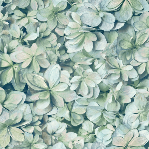 RMK11192WP York Wallcovering RoomMates Hydrangea Peel and Stick Wallpaper