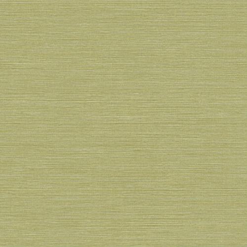 BV35424 Seabrook Wallcovering Texture Gallery Coastal Hemp Wallpaper Lime Moss