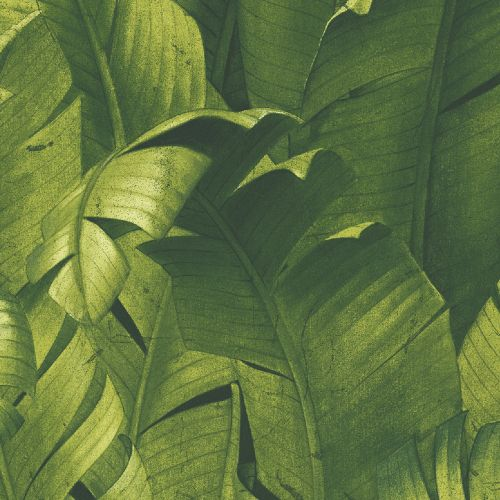 NW31000 Seabrook Wallcoverings NextWall Tropical Banana Leaves Peel and Stick Wallpaper Green