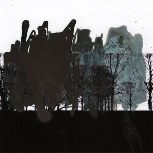 peinture sur photo 15cm x15cm arbre 1 N° 15