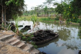 Pemanfaatan humus enceng gondok dari dasar Danau Rawapening (2)
