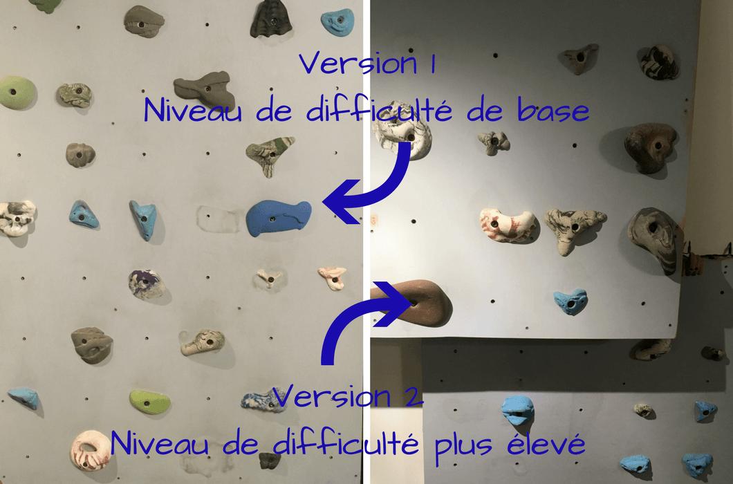 LeLoLife 2 murs d'escalade niveaux de difficulté différents