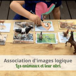 LeLoLife - Association d'images logique - les animaux et leur abris