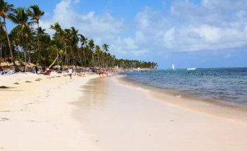 punta cana plage palmiers