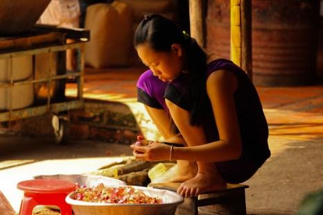 le-mag-de-poche-wordpress-image-vietnam-au-fil-du-mekong (1)