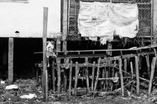 le-mag-de-poche-wordpress-image-vietnam-au-fil-du-mekong (4)