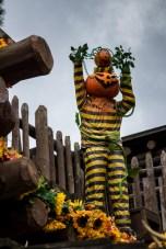 le-mag-de-poche-wordpress-image-disneyland-halloween (3)