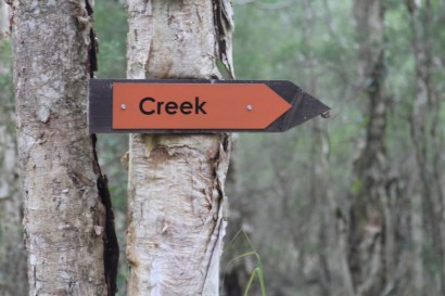 To the Creek