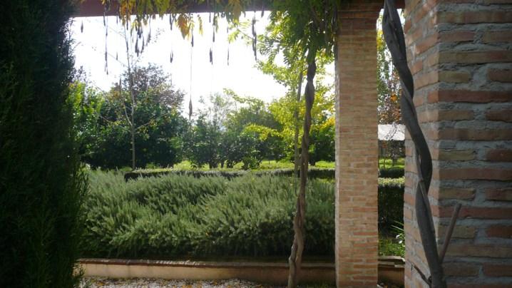 Vista enmarcada sobre el jardín