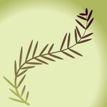 Olive branch by John LeMasney via 365sketches.org #cc #design #peace