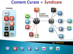 Social Syndication WorkFlow