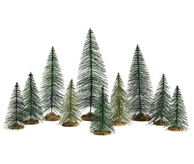 Needle Pine Trees