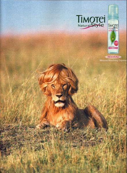 timotei-lion-meilleure-pub-coiffure-shampoing