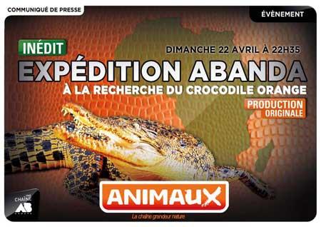 animaux-tv-documentaire-crocodile