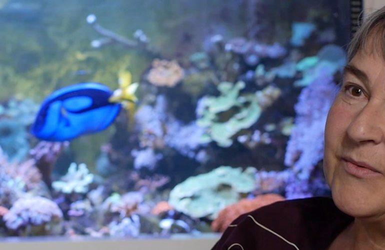 Merivesiakvaario