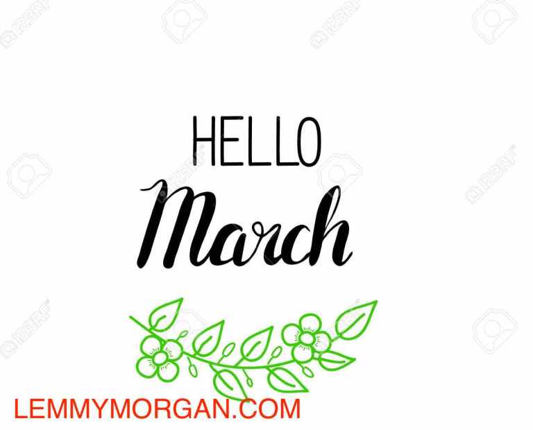 Lemmy Morgan March 2017 Updates