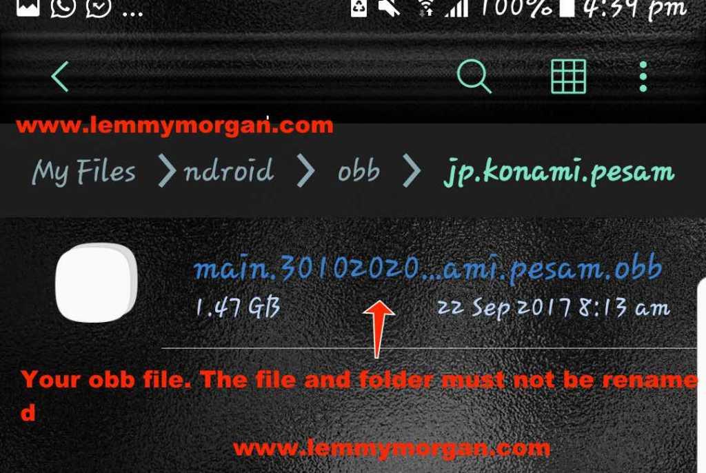 .obb file type