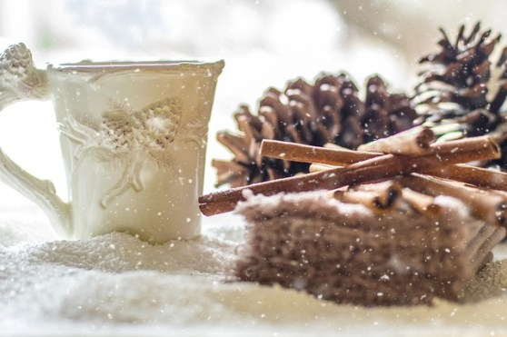 pine-cones-2110283_640