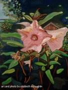 """""""Hibiscus"""""""