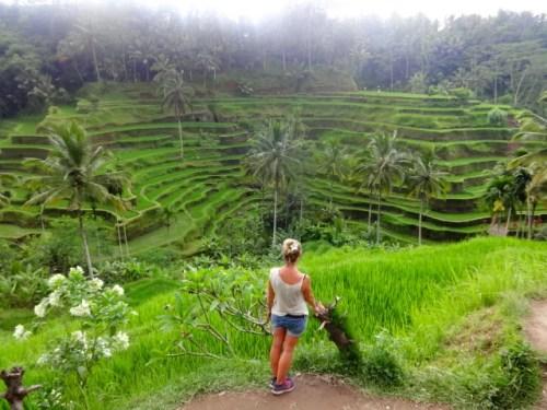 voyager en solo