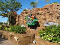 rainforest-cafe-disney-springs