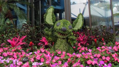 flower-and-garden-festival-epcot-14