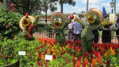 flower-and-garden-festival-epcot-26