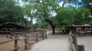 camping-disney-fort-wilderness-8