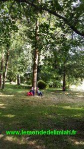 journée portes ouvertes Ecoute Holistique Sensitive formation en développement personnel énergétique connexion avec les arbres