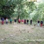 Découverte des activités de la Bergerie des Bois