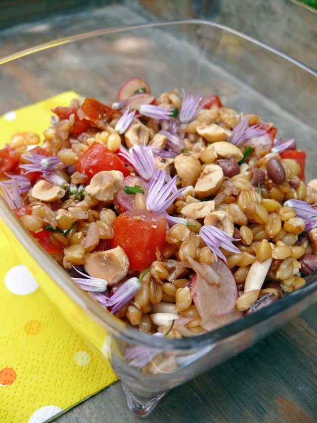 salade_epeautre_3