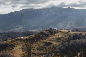 ROUMANIE – Măgura, une plongée dans la campagne roumaine