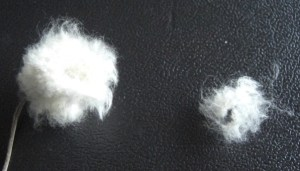 anemone_cellulose1