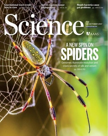 science_spiders