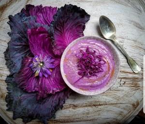 purple cabbage cream cavolo viola
