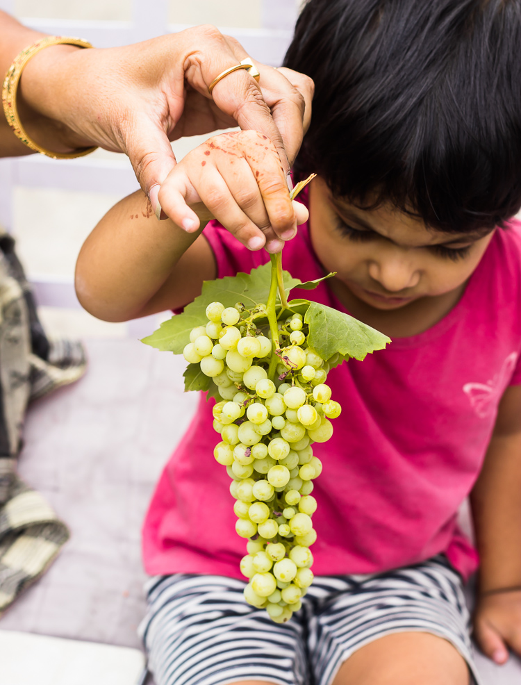 PhotoStory | Grapes and Home