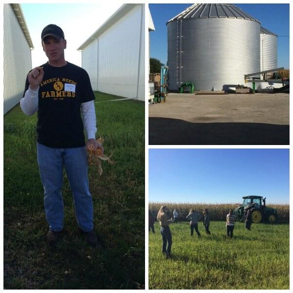 Iowa Corn Collage