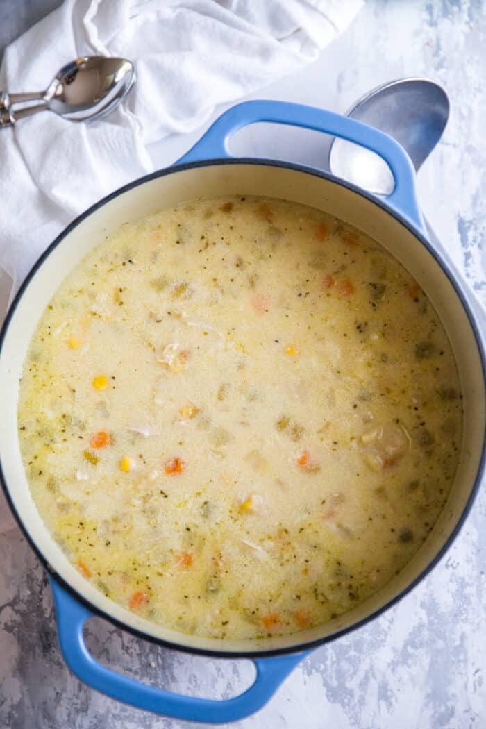 chicken stw in pot
